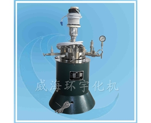 Laboratory Reactor with PTFE
