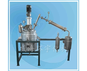 Stainless Steel Reactor SS316L+Q345R
