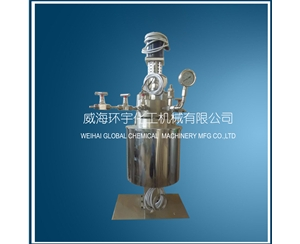 Lab Scale Stainless Steel Reactor