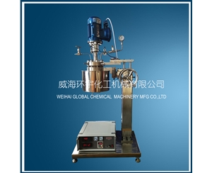 GSH-0.5L Hydrogenation Reactor with Ex-proof Motor and Lifting Device